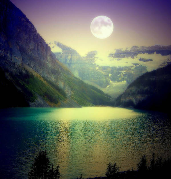 Lake Louise Art Print featuring the photograph Moonlit Encounter by Karen Wiles
