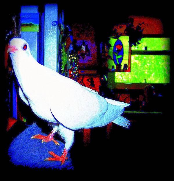 Pigeon Art Print featuring the mixed media Owl Pigeon by YoMamaBird Rhonda