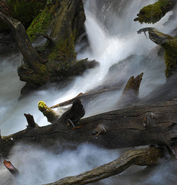 River Art Print featuring the photograph Downstream by Matthew Fredricey