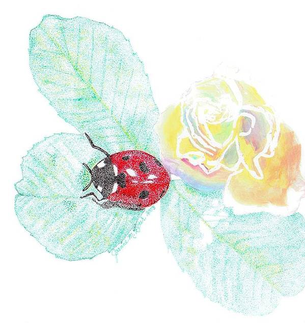 Rose And Ladybug Art Print featuring the drawing Ladybug by Joanne Dour