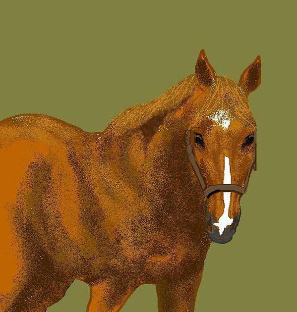 Horse Art Print featuring the digital art Young Duke by Carole Boyd