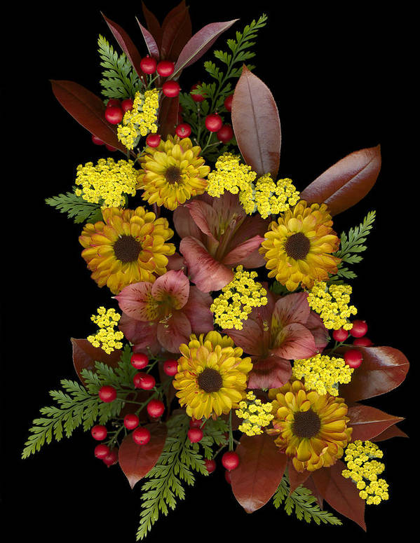 Floral Art Print featuring the photograph Fall Collection by Marsha Tudor