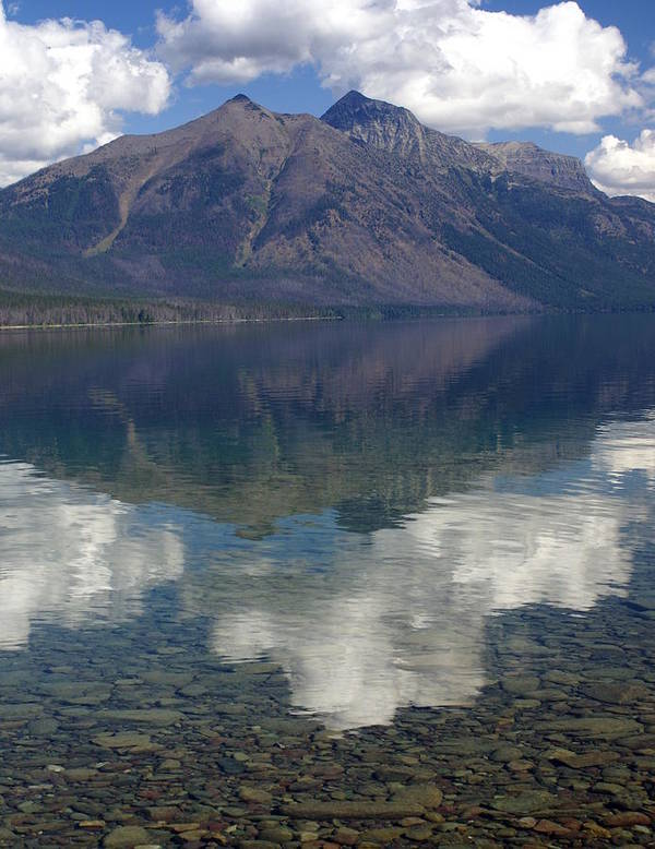 Lake Art Print featuring the photograph Reflections On The Lake by Marty Koch