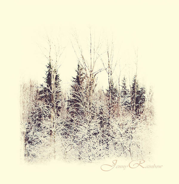 Winter Art Print featuring the photograph Winter Wonderland. Elegant Knickknacks From Jennyrainbow by Jenny Rainbow