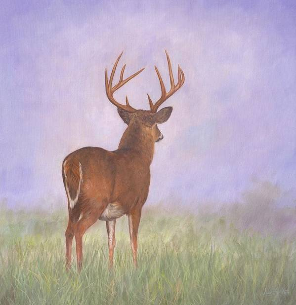 Whitetail Art Print featuring the painting Whitetail by David Stribbling