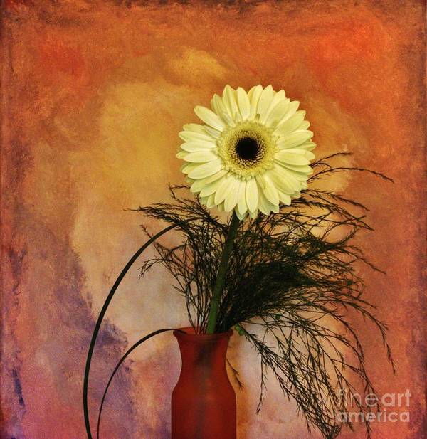 Photo Art Print featuring the photograph Gerber Daisy Still Life by Marsha Heiken