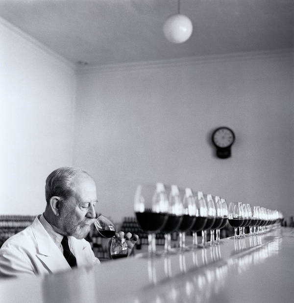 55-59 Years Art Print featuring the photograph Mature Wine Tester With Row Of Glasses (b&w) by Hulton Archive