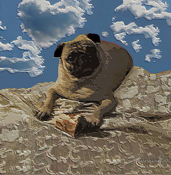 Dogs Art Print featuring the photograph Mongo With Texture by Dede Shamel Davalos
