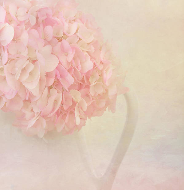 Hydrangea Art Print featuring the photograph Pink Hydrangea Flowers In White Vase by Kim Hojnacki
