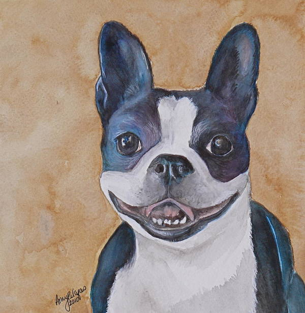 Boston Terrier Art Print featuring the painting Emma The Boston Terrier by Amy Pilafas