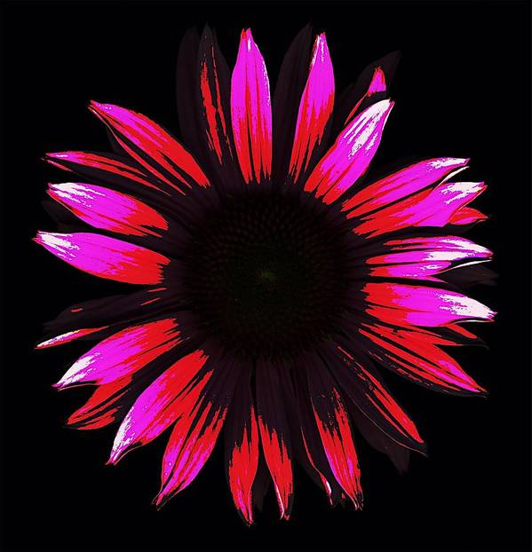 Scanography Art Print featuring the digital art Flower A Go-go by Deborah J Humphries