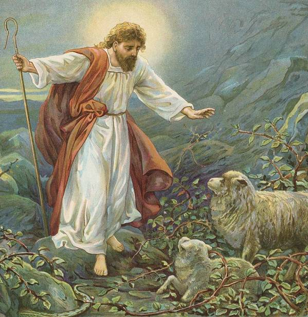 Bible Stories; Biblical; Jesus Christ; The Tender Shepherd; Sheep; Rescue Art Print featuring the painting Jesus Christ The Tender Shepherd by Ambrose Dudley