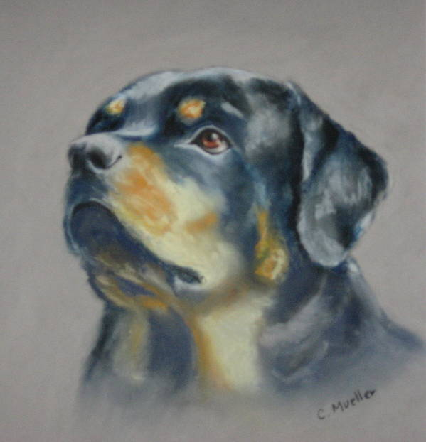 Dog Art Print featuring the painting Lars by Carol Mueller