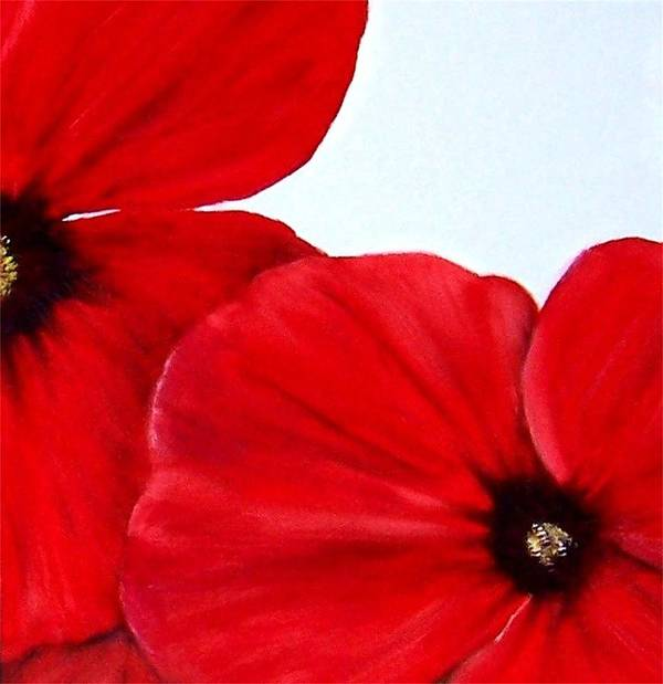 Floral Art Print featuring the painting Poppy 2 by Penny Everhart