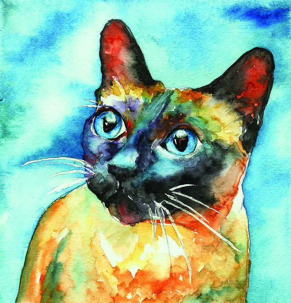 Siamese Cat Art Print featuring the painting Siamese Cat by Christy Freeman