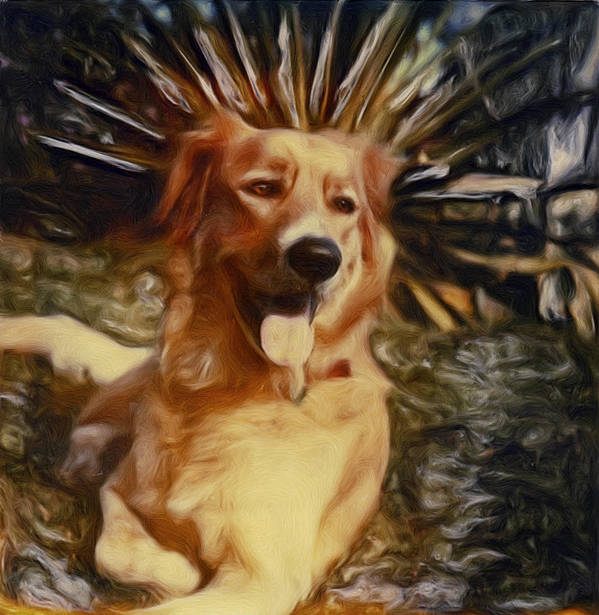 Dog Art Print featuring the photograph Top Dog by Lou Novick
