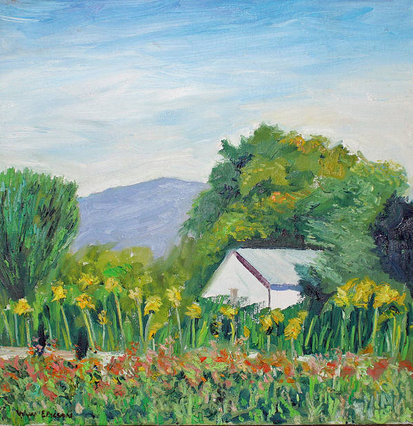 Napa Valley Art Print featuring the painting White Barn by Wyn Ericson