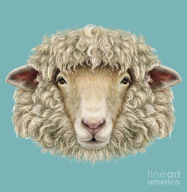 Wool Art Print featuring the digital art Sheep Portrait. Illustrated Portrait Of by Ant art