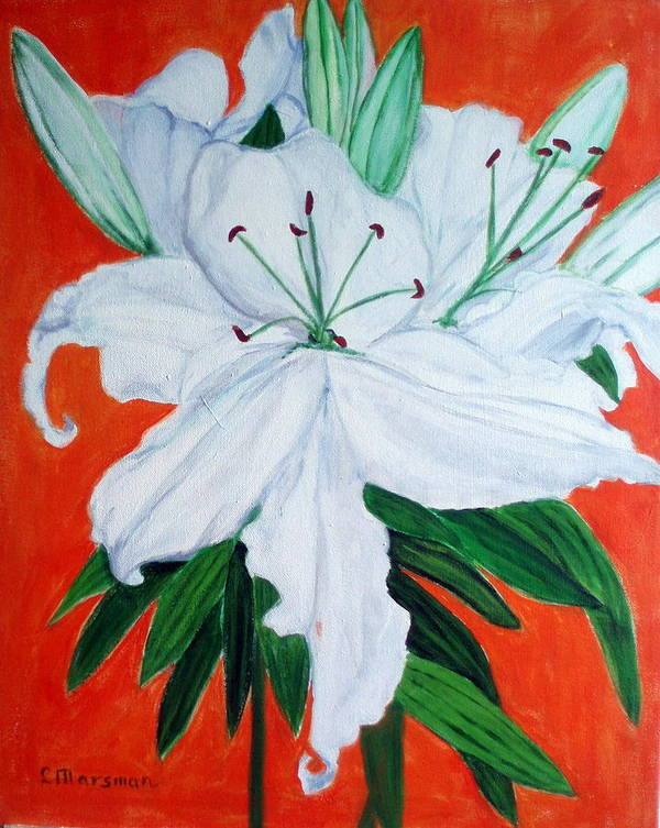 Flowers Art Print featuring the painting Lily On Red by Lia Marsman