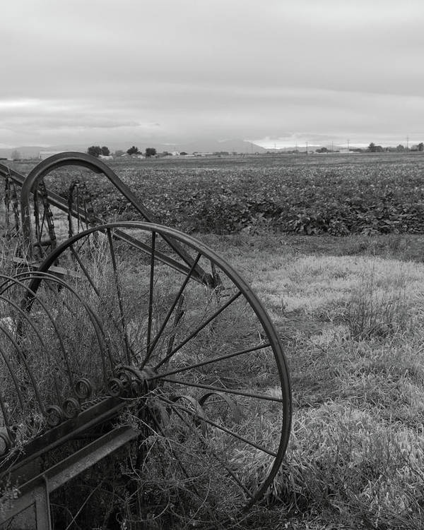 Abandoned Art Print featuring the photograph Hay Rakes San Joaquin County Ca by Troy Montemayor