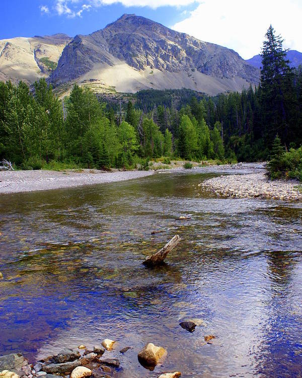 Stream Glacier National Park Art Print featuring the photograph Running Eagle Creek Glacier National Park by Marty Koch