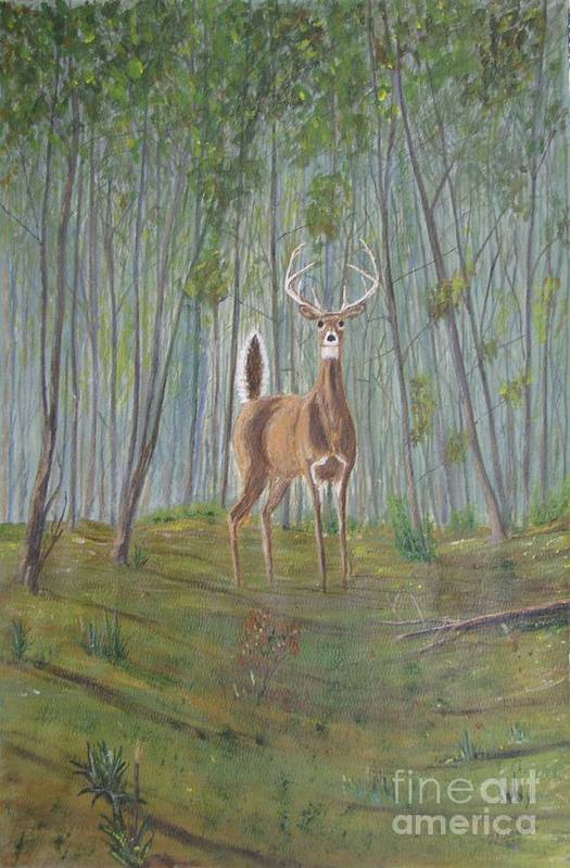 Deer Art Print featuring the painting White-tailed Deer - Impressionistic by Dana Carroll