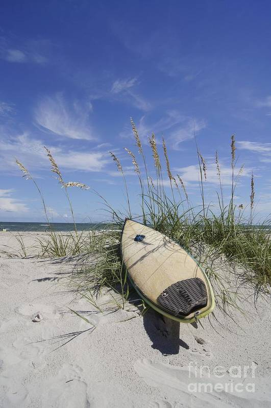 Surfboard Art Print featuring the photograph In The Dunes by Benanne Stiens
