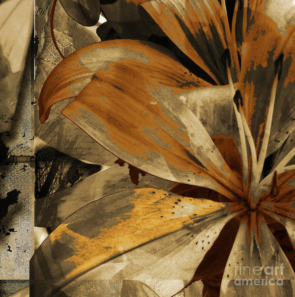 Art Print featuring the mixed media Awed IIi by Yanni Theodorou
