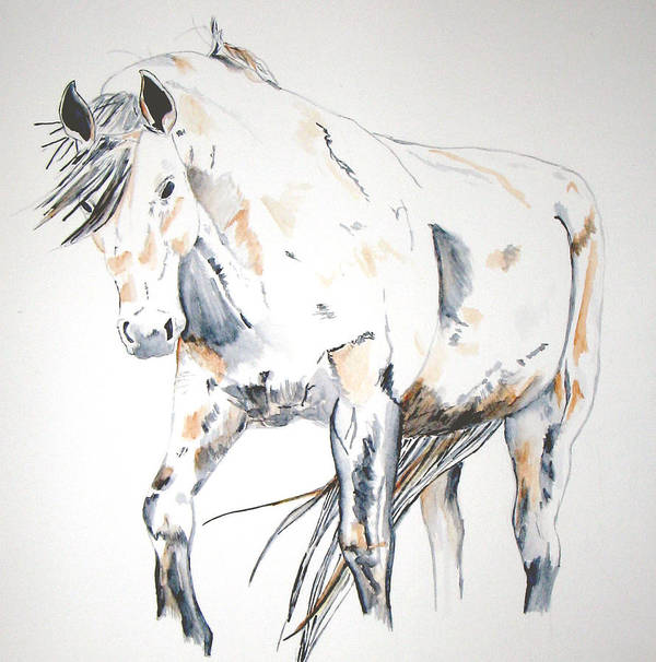 Horse Art Print featuring the painting Beauty by Crystal Hubbard