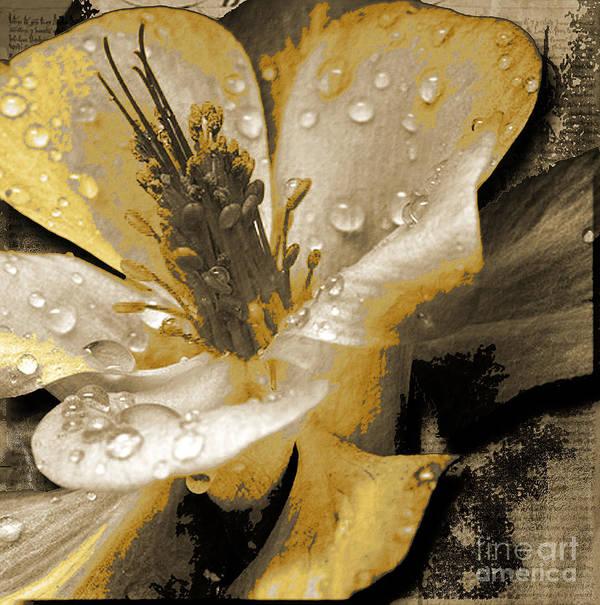 Art Print featuring the mixed media Beauty II by Yanni Theodorou