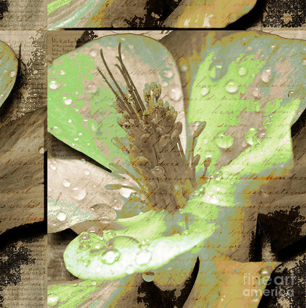 Art Print featuring the mixed media Beauty X by Yanni Theodorou