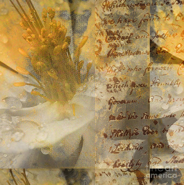 Art Print featuring the mixed media Flowers IIi by Yanni Theodorou