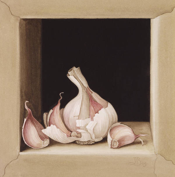 Clove; Cloves; Bulb; Food; Ingredient; Still Life; Culinary; Ledge; Onion Print featuring the painting Garlic by Jenny Barron