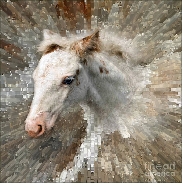 Horse Art Print featuring the photograph Little Blue Eye by Liz Alderdice
