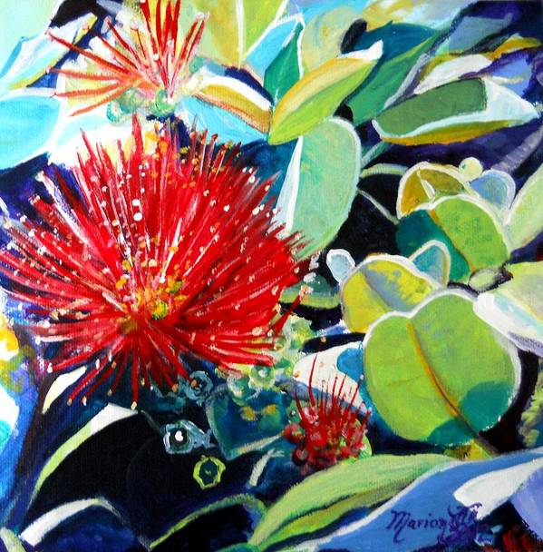 Hawaiian Flower Art Print featuring the painting Red Ohia Lehua Flower by Marionette Taboniar