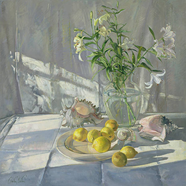 Still Life; Lemon; Flower; Lily; Shells; Shell; Sunlight Art Print featuring the painting Reflections And Shadows by Timothy Easton
