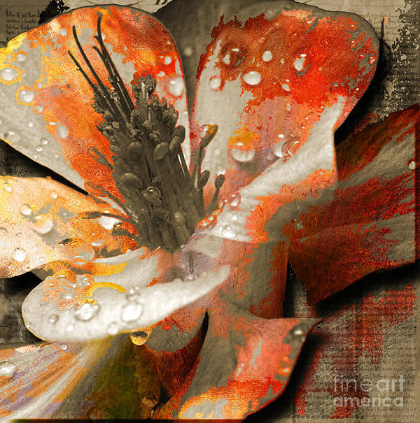 Print featuring the mixed media Seeds by Yanni Theodorou