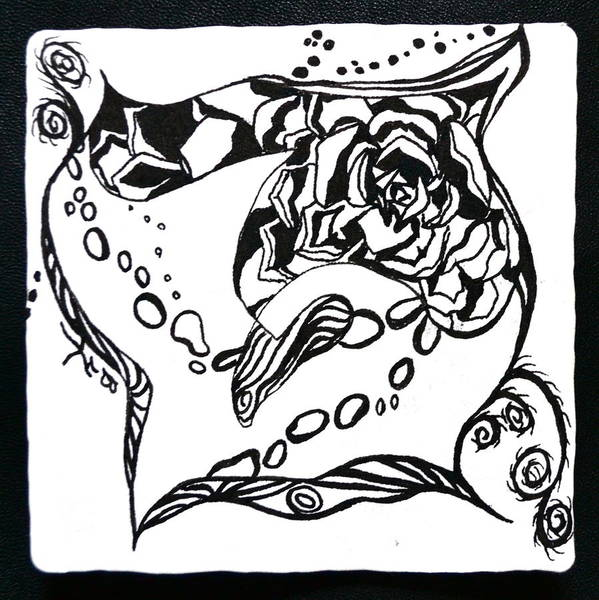 Zentangle Art Print featuring the drawing Succulent Stream Of Consciousness by Beverley Harper Tinsley