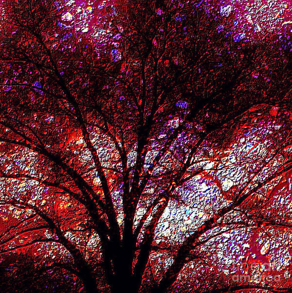 Tree Emboss Art Print featuring the photograph Tree Emboss by Gayle Price Thomas