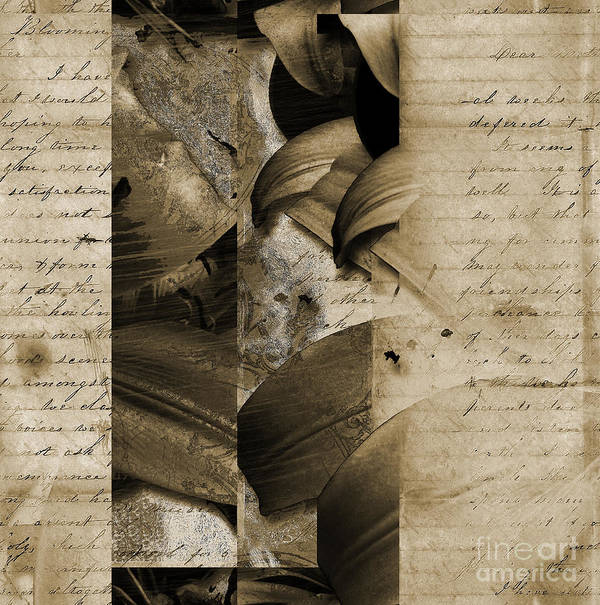 Print featuring the mixed media Written II by Yanni Theodorou