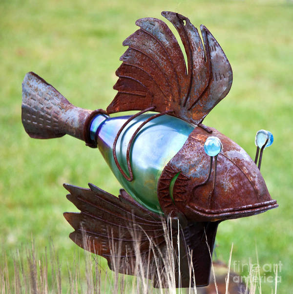 Fish Photography Prints Art Print featuring the photograph Metal Fish by Loriannah Hespe