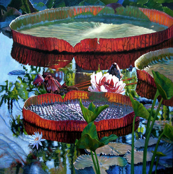 Water Lilies Art Print featuring the painting Sunlight Shining Through by John Lautermilch