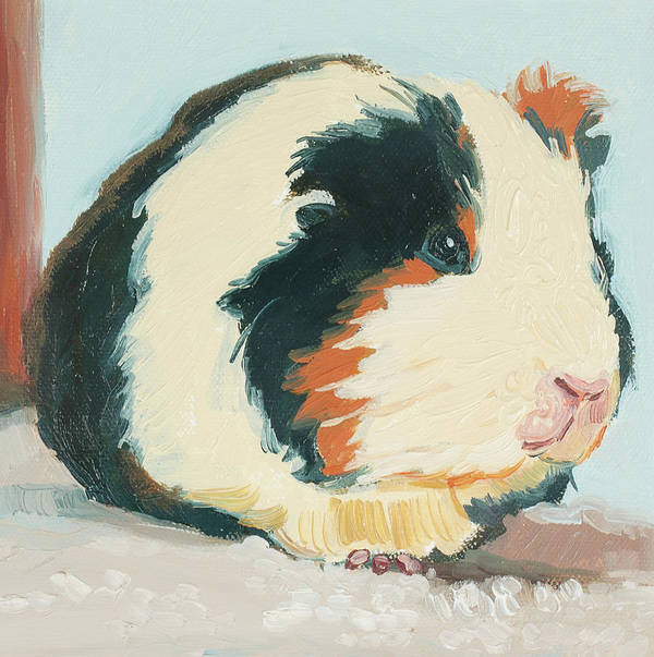 Guinea Pig Art Print featuring the painting Sweet Guinea by Debbie Beukema