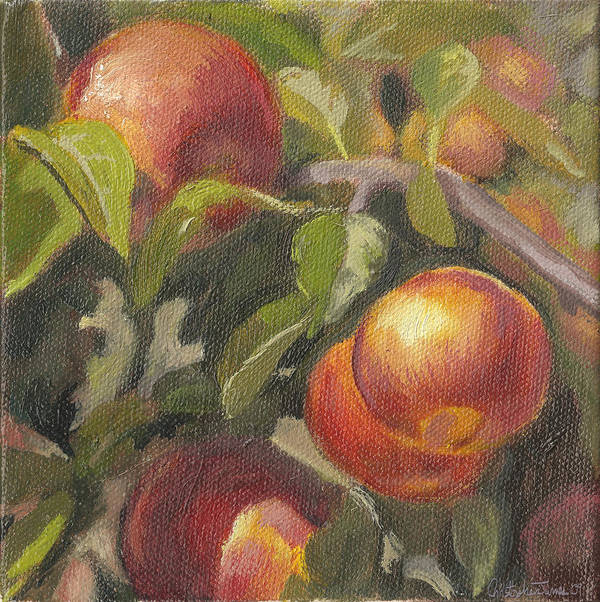 Apples Art Print featuring the painting Apples In The Orchard by Christopher James