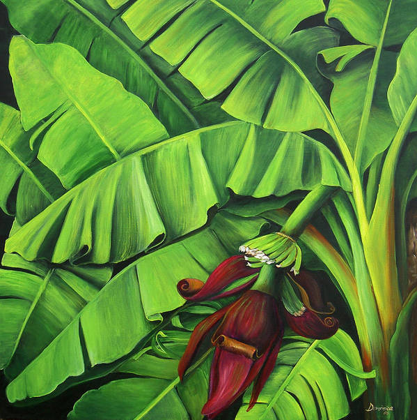 Banana Tree Art Images