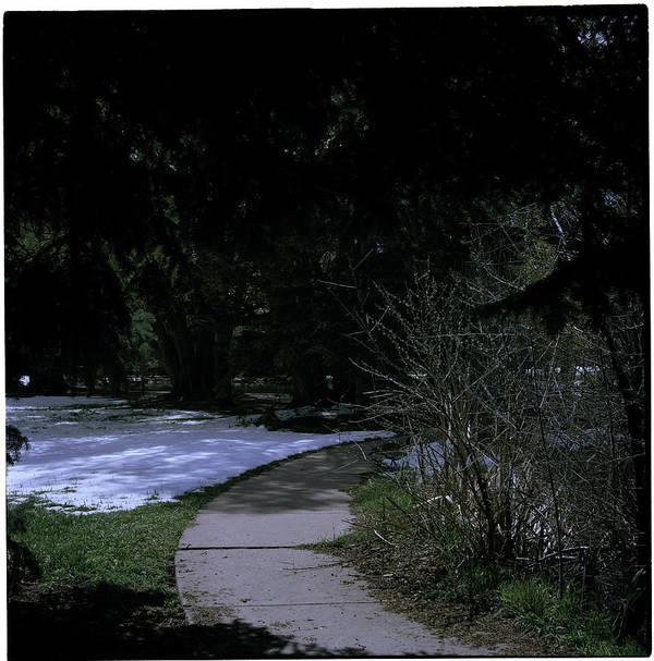 Rock Ledge Ranch Art Print featuring the photograph Dark Path by Rachael Armstead