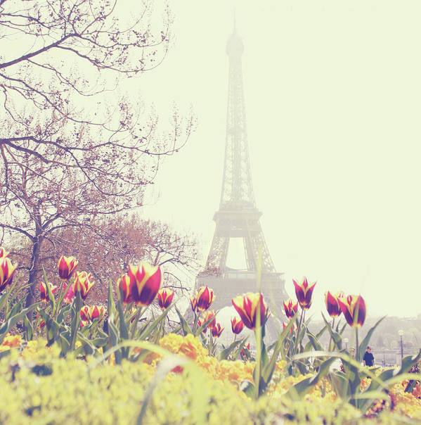 Vertical Print featuring the photograph Eiffel Tower With Tulips by Gabriela D Costa