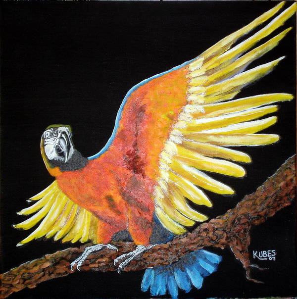 Macaw Art Print featuring the painting Macaw - Wingin' It by Susan Kubes