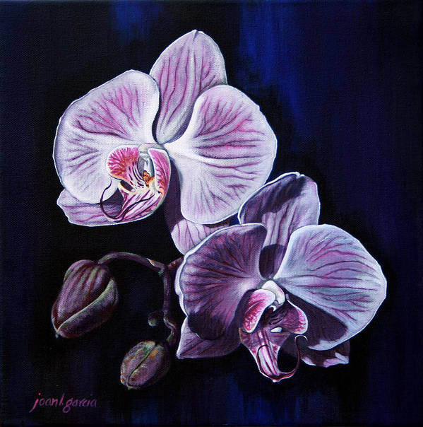 Flowers Art Print featuring the painting Orchids II by Joan Garcia