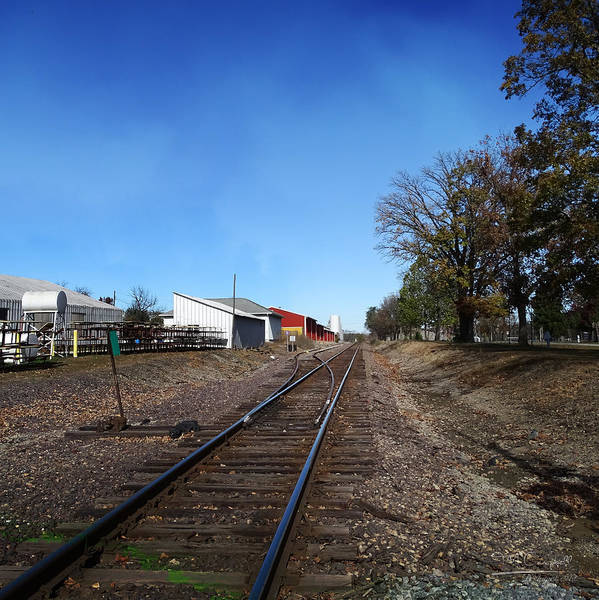 Illinois Art Print featuring the photograph Railroad Tracks Switch Station by Theresa Campbell
